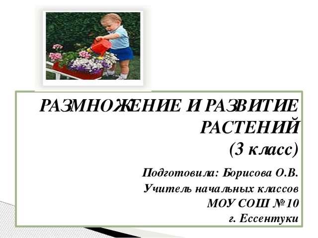 РАЗМНОЖЕНИЕ И РАЗВИТИЕ РАСТЕНИЙ (3 класс) Подготовила: Борисова О.В. Учите...