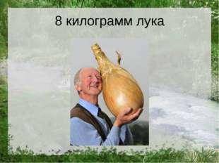 8 килограмм лука