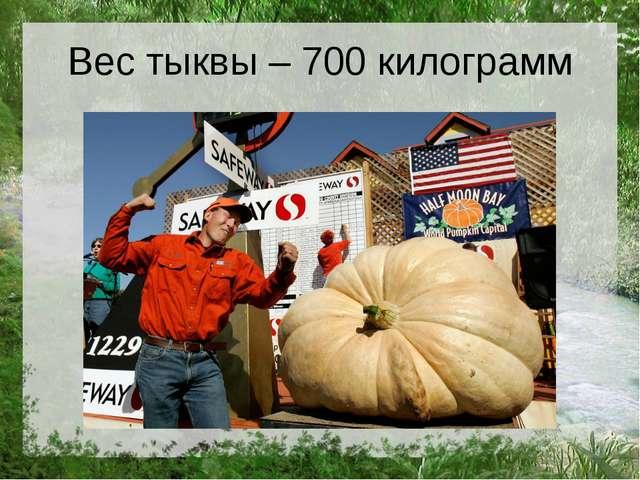 Вес тыквы – 700 килограмм