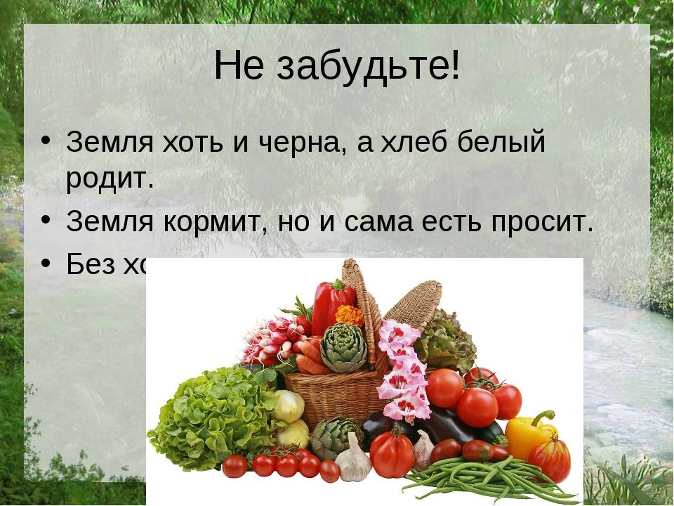 Не забудьте! Земля хоть и черна, а хлеб белый родит. Земля кормит, но и сама...