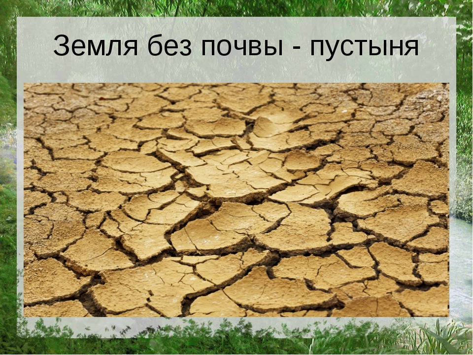 Земля без почвы - пустыня