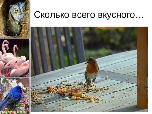 Сколько всего вкусного… ProPowerPoint.Ru