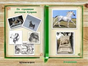 По страницам рассказов Куприна Щёлкни на фото В содержание
