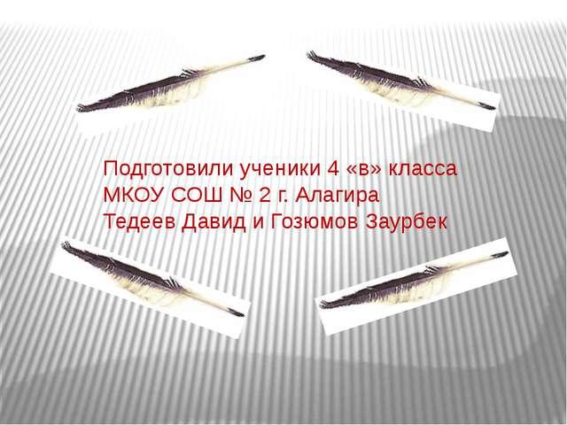 Подготовили ученики 4 «в» класса МКОУ СОШ № 2 г. Алагира Тедеев Давид и Гозюм...