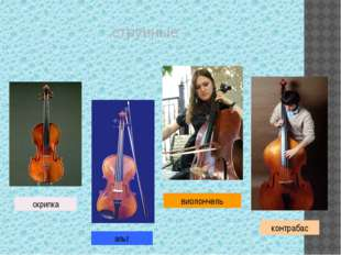 «СЕМЬЯ СТРУННЫХ СМЫЧКОВЫХ ИНСТРУМЕНТОВ» Альт, контрабас, виолончель В оркест