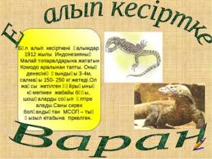 Бұл алып кесірткені ғалымдар жылы Индонезияның Малай топаралдарына жататын К