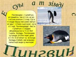 Пингвиндер – ұшпайтын, жүгірмейтін, тек сүңгіп, жүзіп қозғала алатын құстар.