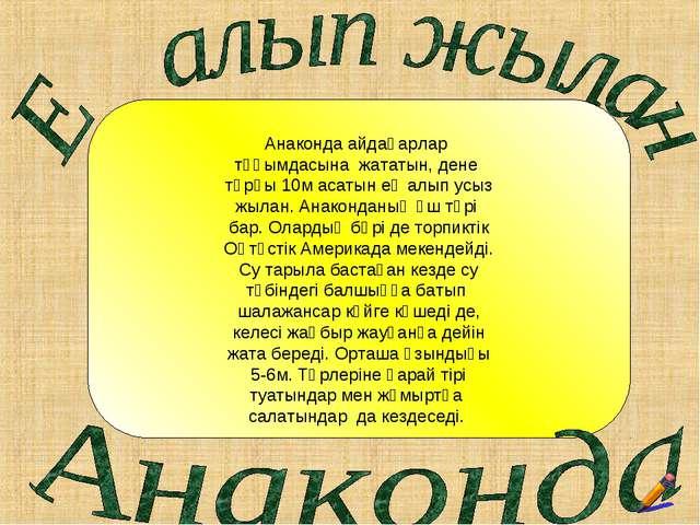Анаконда айдаһарлар тұқымдасына жататын, дене тұрқы 10м асатын ең алып усыз...
