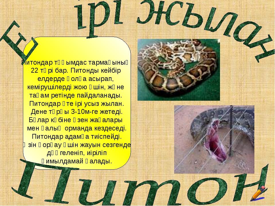 Питондар тұқымдас тармағының 22 түрі бар. Питонды кейбір елдерде қолға асыра...