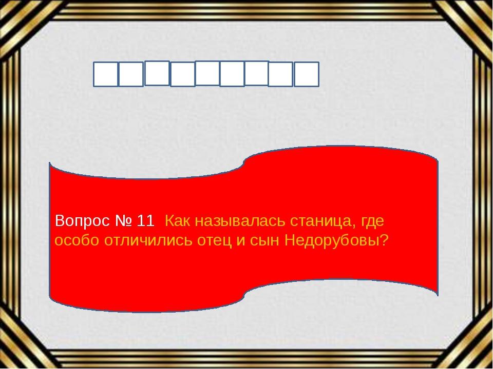 Вопрос № 11 Как называлась станица, где особо отличились отец и сын Недорубовы?