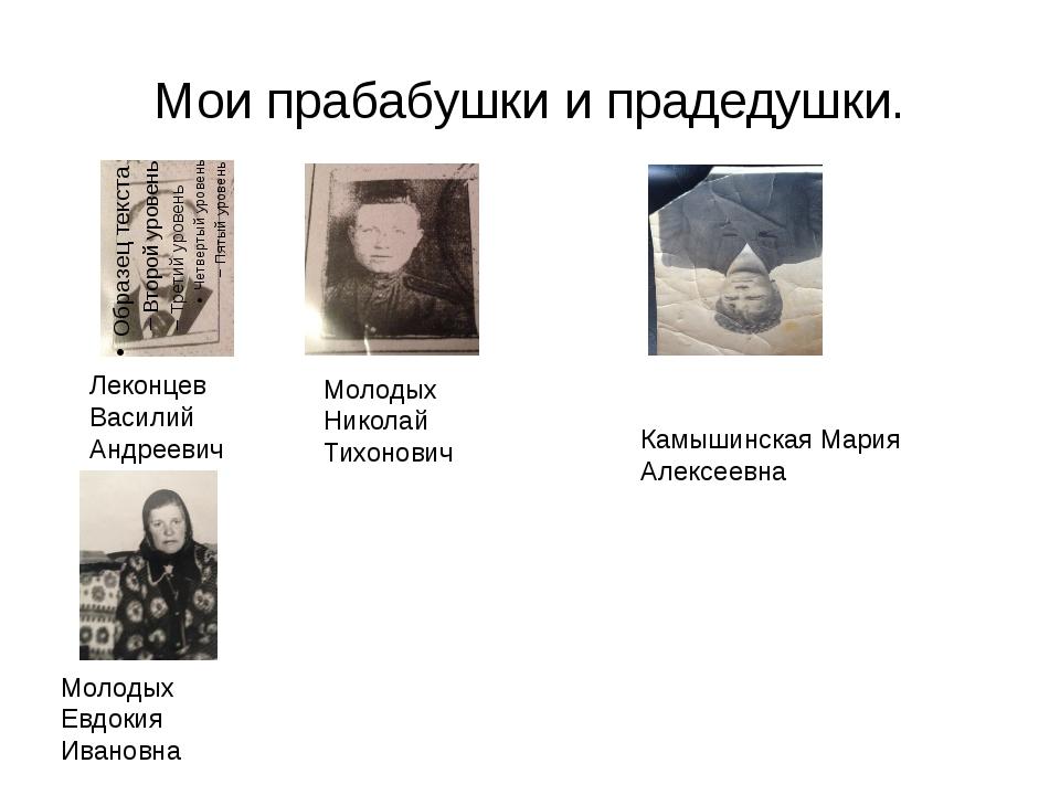 Мои прабабушки и прадедушки. Леконцев Василий Андреевич Молодых Николай Тихон...