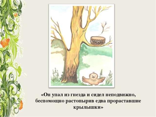 «Он упал из гнезда и сидел неподвижно, беспомощно растопырив едва прораставши...