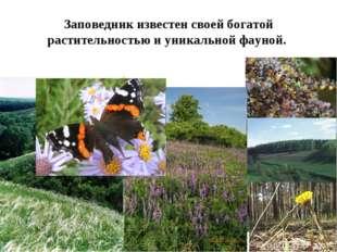 Заповедник известен своей богатой растительностью и уникальной фауной.