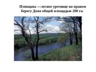 Плющань —лесное урочище на правом берегу Дона общей площадью 200 га.