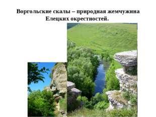 Воргольские скалы – природная жемчужина Елецких окрестностей.