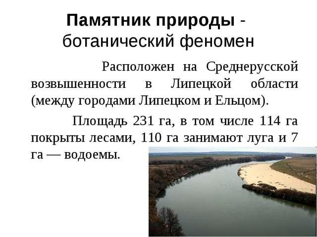 Памятник природы - ботанический феномен Расположен на Среднерусской возвышенн...