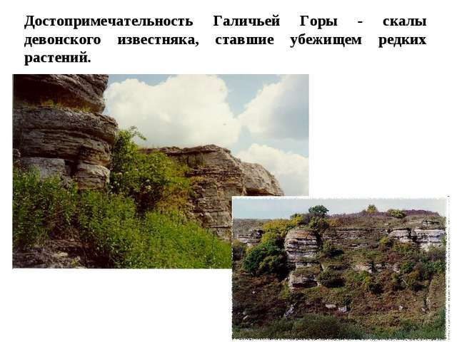 Достопримечательность Галичьей Горы - скалы девонского известняка, ставшие уб...