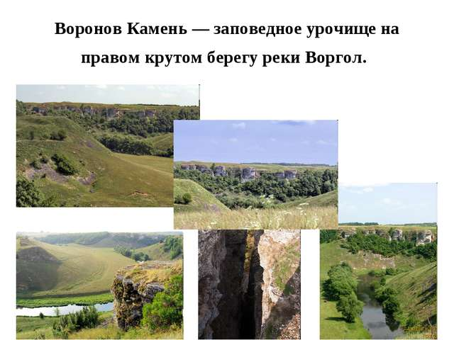 Воронов Камень — заповедное урочище на правом крутом берегу реки Воргол.