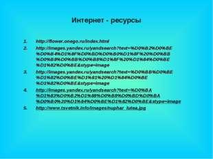 Интернет - ресурсы http://flower.onego.ru/index.html http://images.yandex.ru/