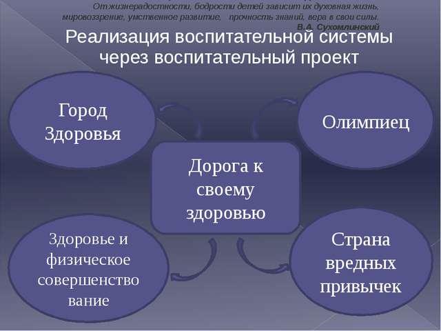 Реализация воспитательной системы через воспитательный проект Дорога к своему...