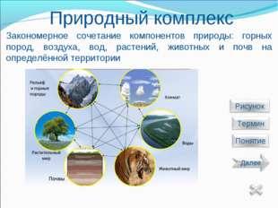Природный комплекс Закономерное сочетание компонентов природы: горных пород,