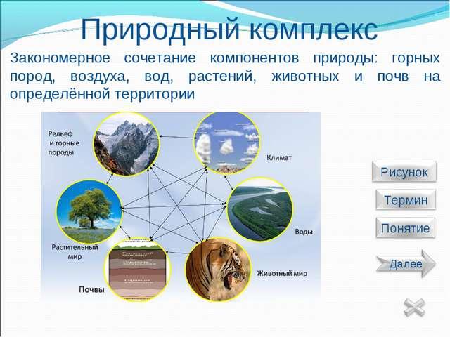 Природный комплекс Закономерное сочетание компонентов природы: горных пород,...