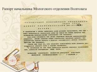 Рапорт начальника Мологского отделения Волголага