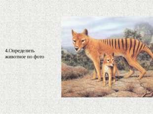 4.Определить животное по фото