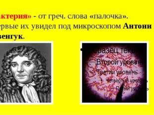 «Бактерия» - от греч. слова «палочка». Впервые их увидел под микроскопом Анто
