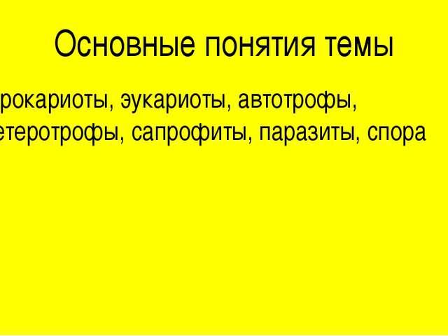 Основные понятия темы Прокариоты, эукариоты, автотрофы, гетеротрофы, сапрофит...