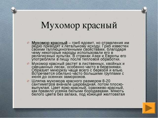Мухомор красный Мухомор красный – гриб ядовит, но отравления им редко приводя...