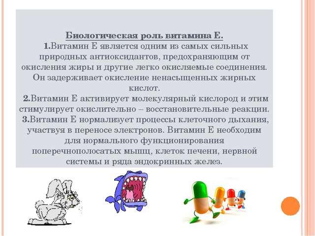 Биологическая роль витамина Е. 1.Витамин Е является одним из самых сильных пр...