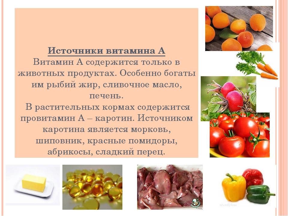 Источники витамина А Витамин А содержится только в животных продуктах. Особен...