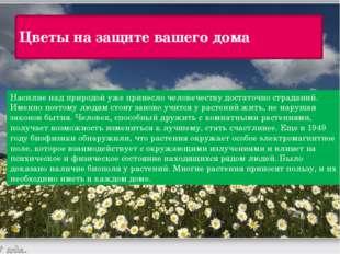 Цветы на защите вашего дома Насилие над природой уже принесло человечеству до