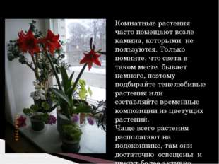 Комнатные растения часто помещают возле камина, которыми не пользуются. Тольк