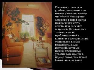 Гостиная - довольно удобное помещение для многих растений, потому что обычно