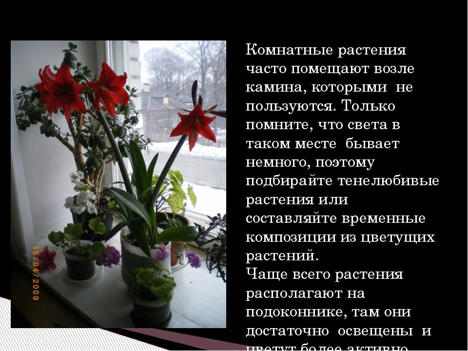 Комнатные растения часто помещают возле камина, которыми не пользуются. Тольк...