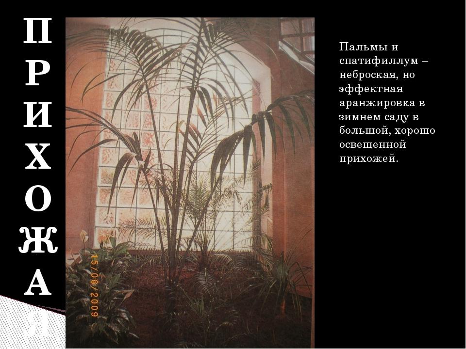 П Р И Х О Ж А Я Пальмы и спатифиллум – неброская, но эффектная аранжировка в...