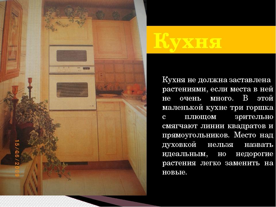 Кухня Кухня не должна заставлена растениями, если места в ней не очень много....