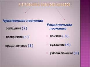 Чувственное познание ощущение ( 2 )  восприятие ( 1 )  представление ( 6