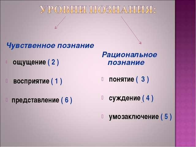 Чувственное познание ощущение ( 2 )  восприятие ( 1 )  представление ( 6...