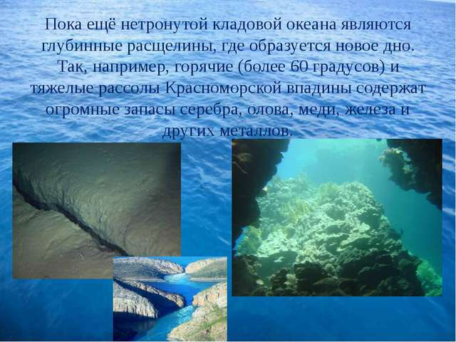 Пока ещё нетронутой кладовой океана являются глубинные расщелины, где образу...