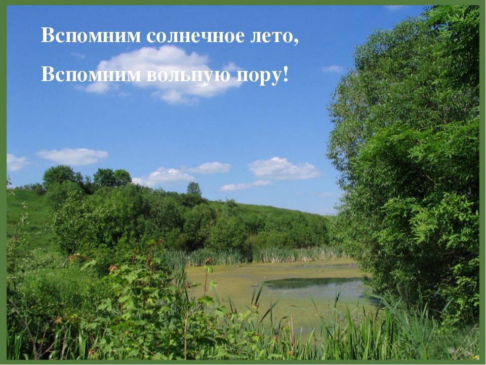 Вспомним солнечное лето, Вспомним вольную пору!