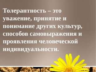 Толерантность – это уважение, принятие и понимание других культур, способов с