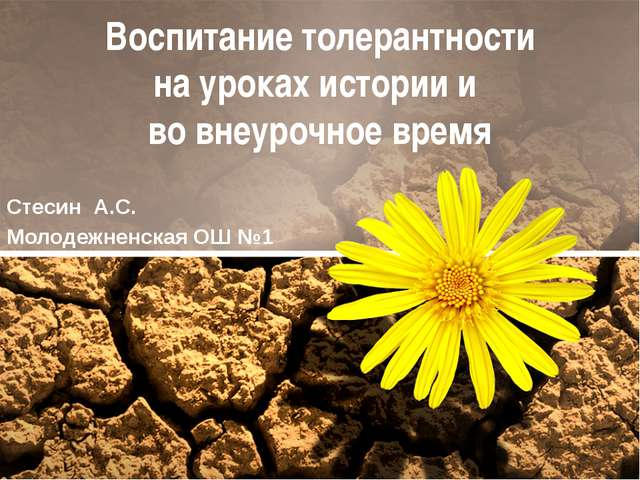 Воспитание толерантности на уроках истории и во внеурочное время Стесин А.С....