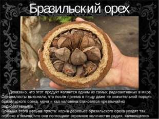 Бразильский орех Доказано, что этот продукт является одним из самых радиоакти