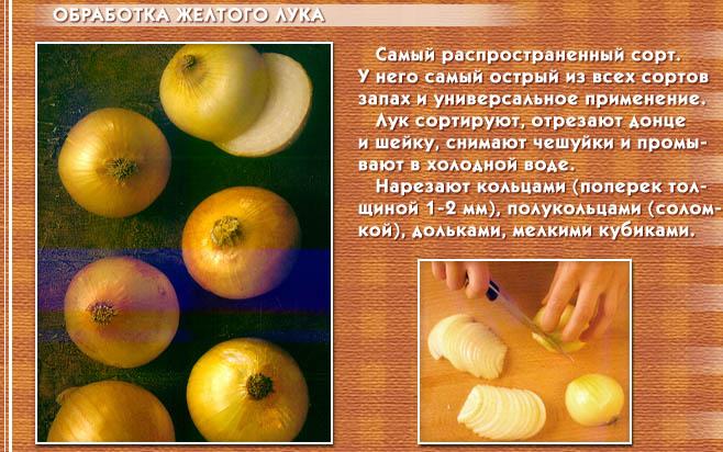 hello_html_m782f0601.jpg