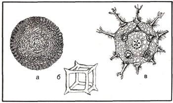 1430-4.jpg
