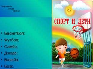 Спортивные секции ДЮСШ: Баскетбол; Футбол; Самбо; Дзюдо; Борьба; Бокс.