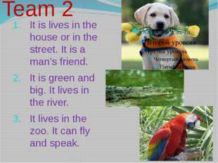 It is lives in the house or in the street. It is a man's friend. It is green